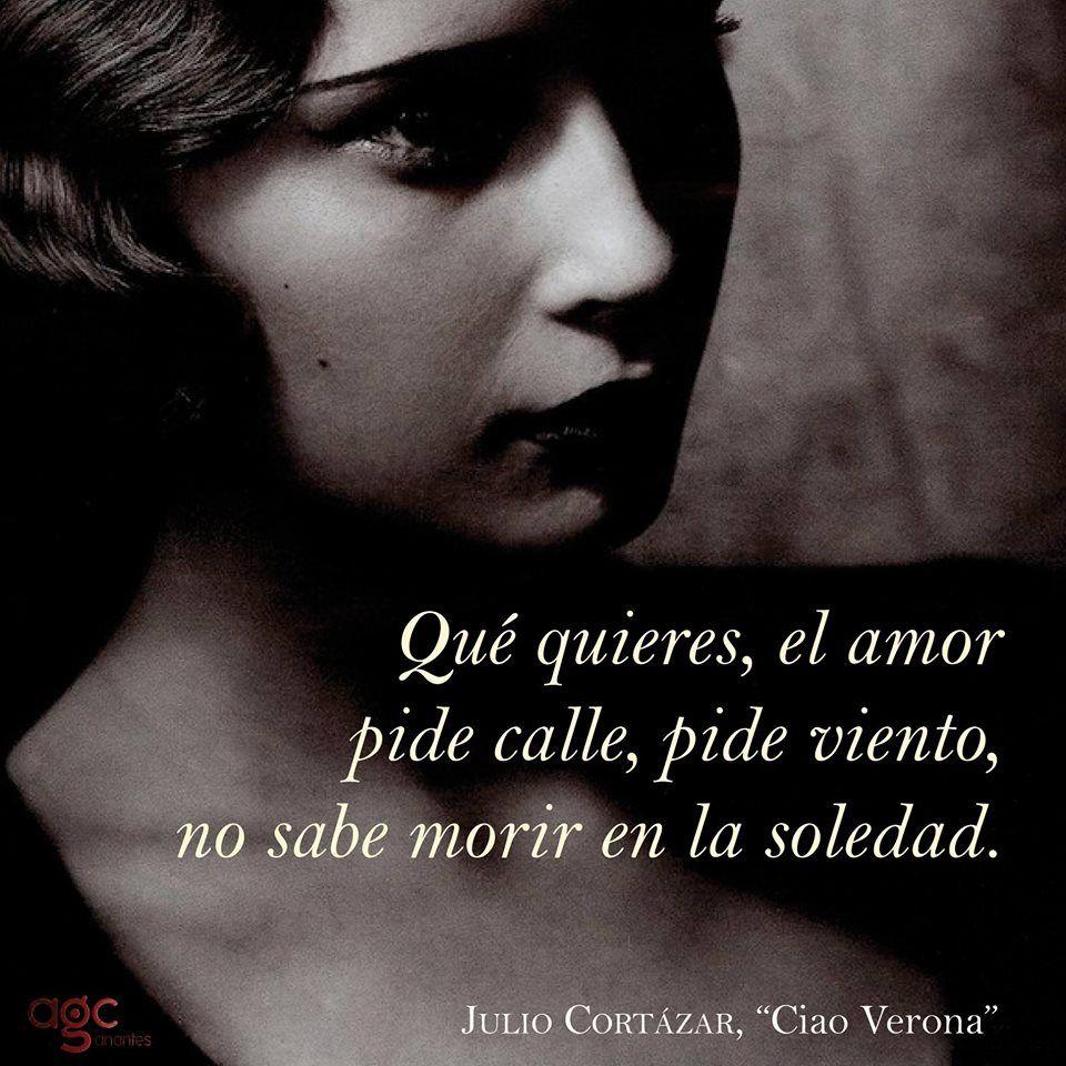 Pin En Julio Cortázar