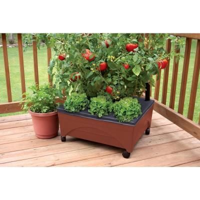 City Pickers 24 5 In X 20 5 In Patio Raised Garden Bed Grow Box Kit With Watering System And Casters In Terra Cotta 2340d Patio Raised Garden Beds Raised Garden Beds Patio Garden Bed