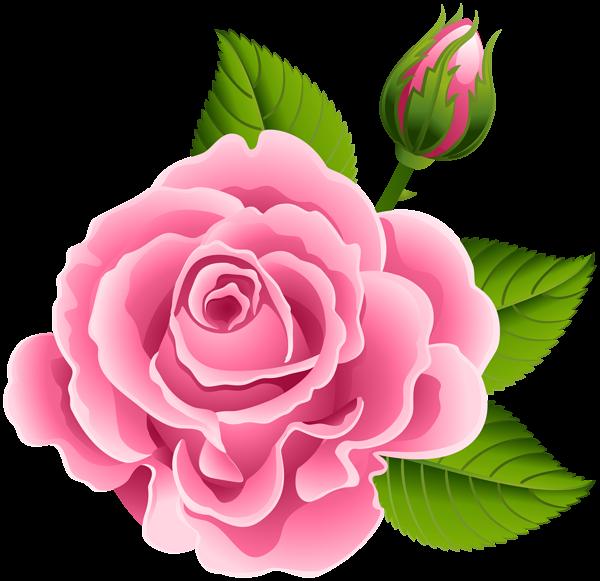 Pink Rose With Rose Bud Png Clip Art Image Beautiful Flower Drawings Rose Flower Wallpaper Flower Art