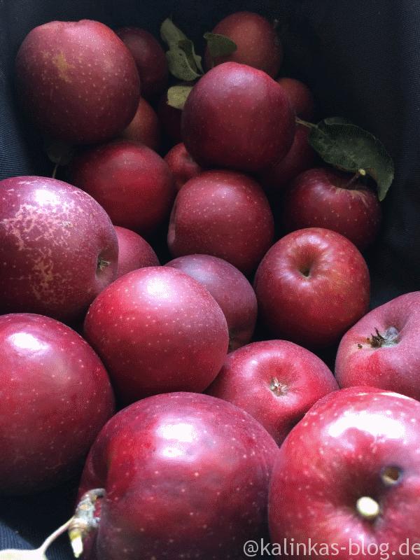 Apfelkuchen (low carb und glutenfrei) #Äpfelverwerten