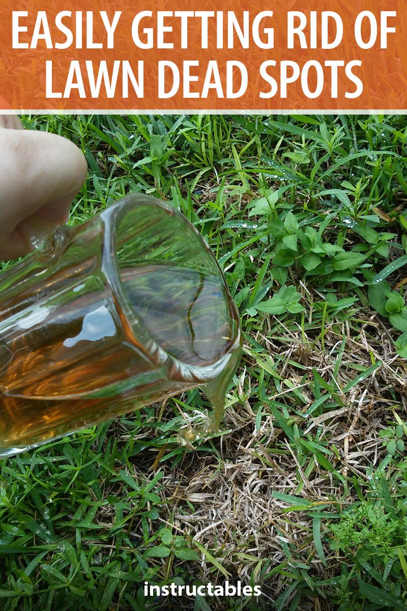 Easily getting rid of dead spots on your lawn
