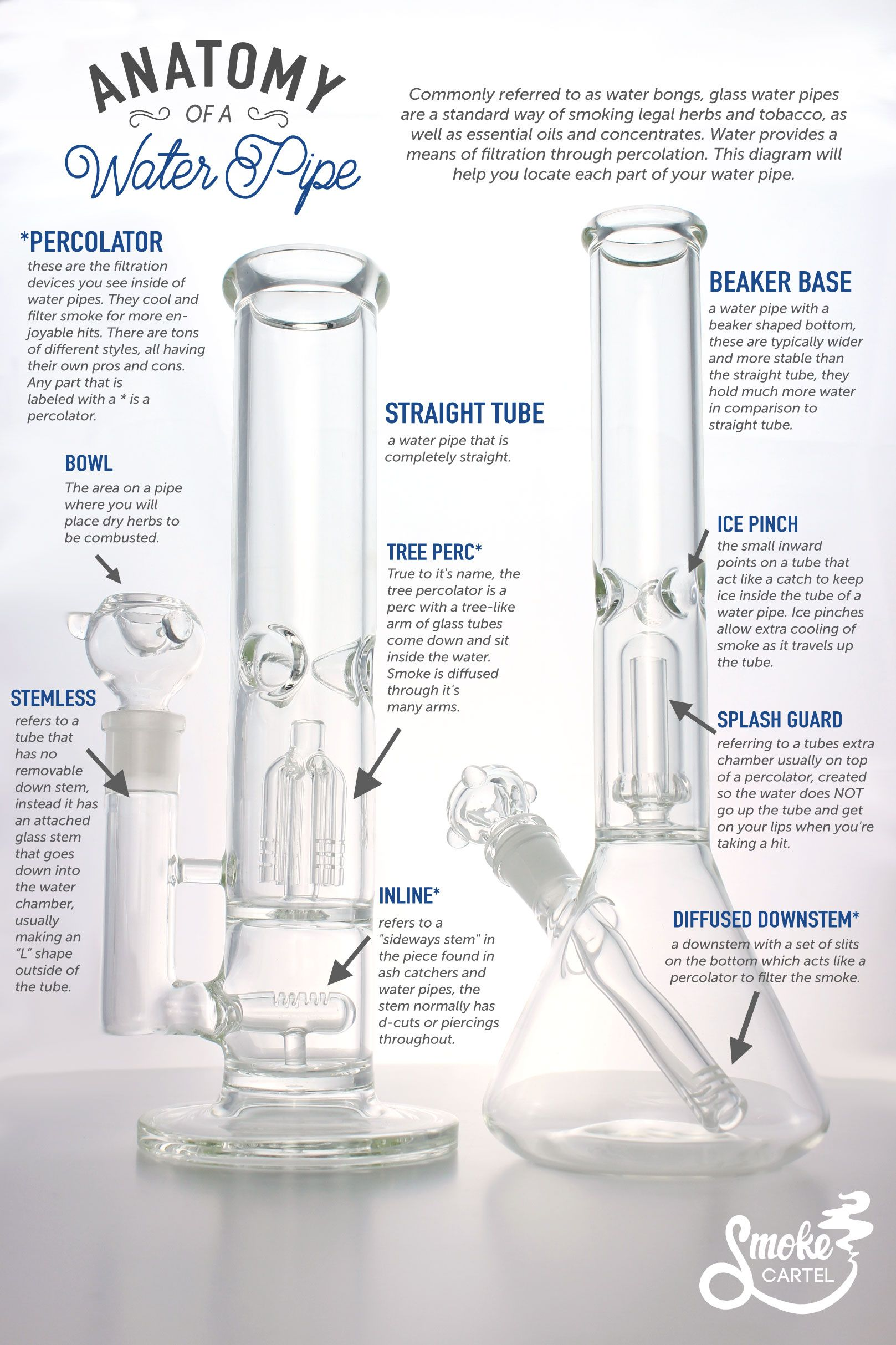 Infographic Anatomy Of A Water Pipe Glassxooze Pinterest
