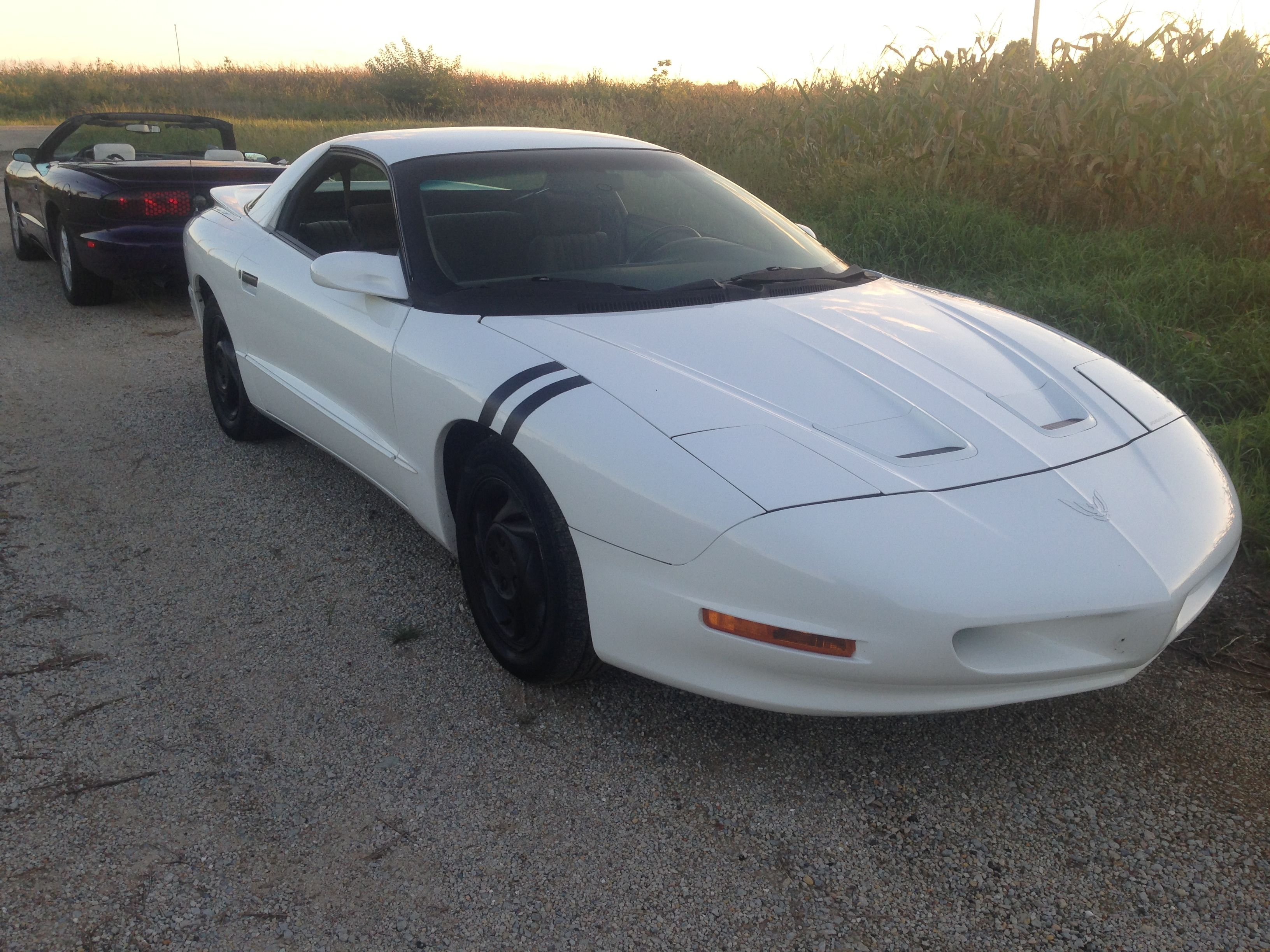 246f22b17125 Back to back f body 4th generation 1994 white formula firebird custom black  plasti dip wheels and side bars