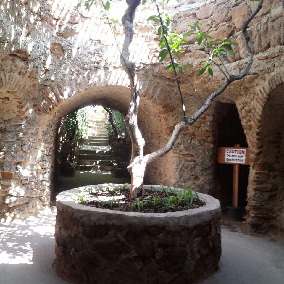 Underground Gardens Baldasare Forestiere Underground Garden