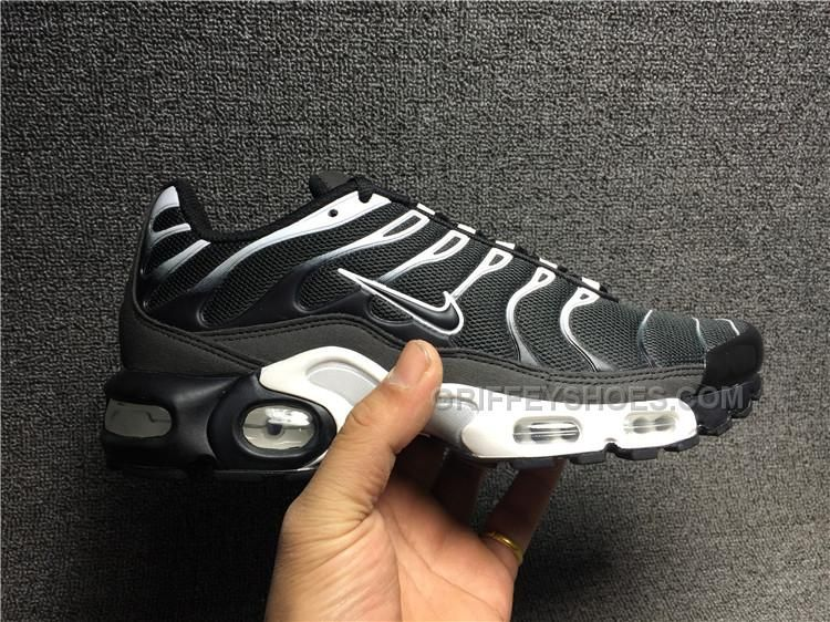 nike air max plus tn 45