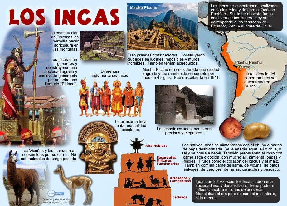 incas info essay