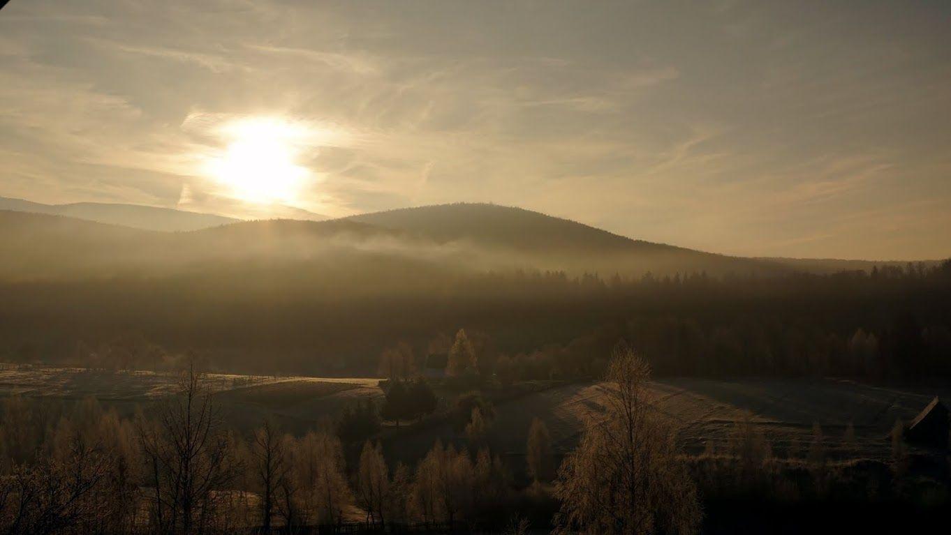 Honor Villa – ce au în comun o cabană cochetă din inima Harghitei, un parc natural unic în România, un centru de echitaţie cu armăsari islandezi şi o mică fabrică ce prelucrează produse din vânat?   Jurnal de Hoinar