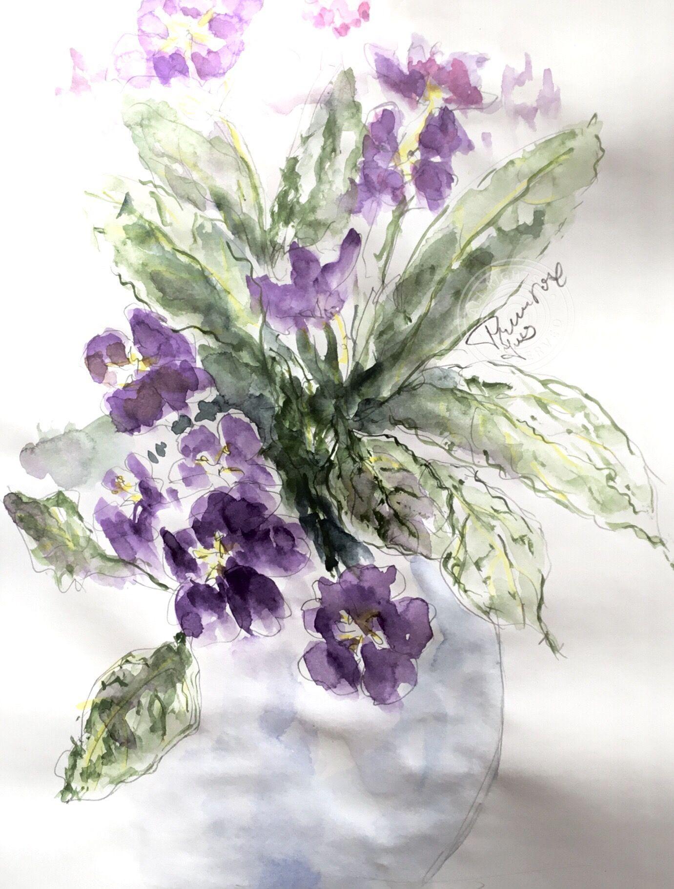 Primrose. Quick watercolour sketch. W&N sketchbook, A3 ...