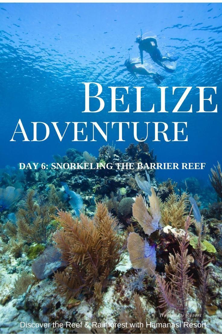 Belize Adventure: Snorkeling The Barrier Reef