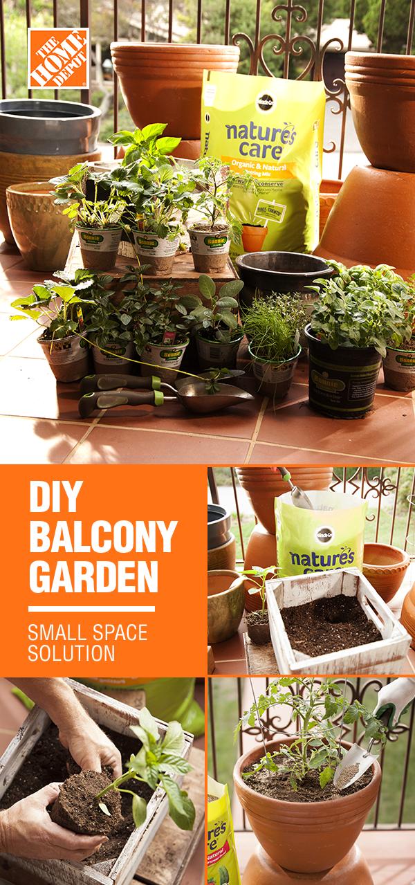 Photo of DIY Balcony Garden