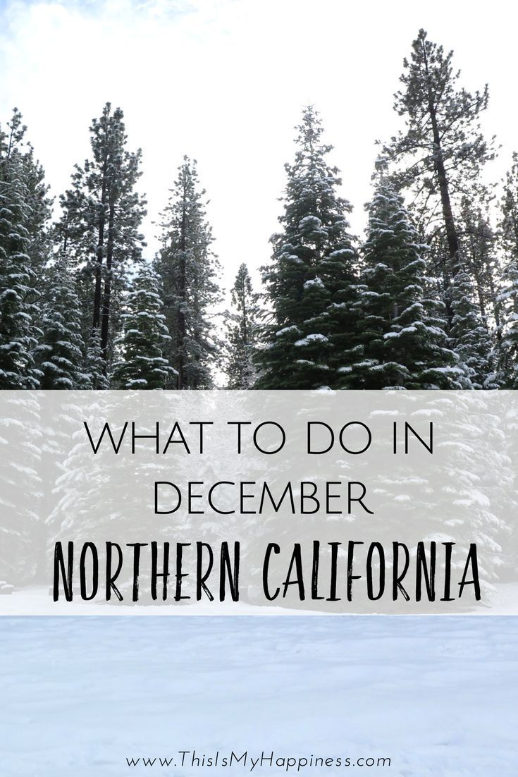 What to do in Northern California in December including best places to see Christmas decorations in Northern California