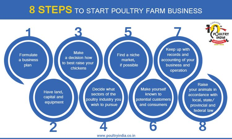 8 STEPS TO START POULTRY FARM BUSINESS !!! Visit