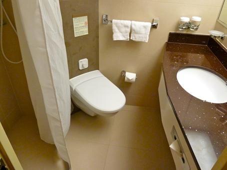 Holland America Cruise Ship Bathroom Wheelchair-accessible With Small Space. | Bathroom ...