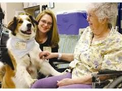 Pets in retirement communities, pros and cons. Thoughts and solutions an activities director can incorporate to making the lives of the residents and pets even better!