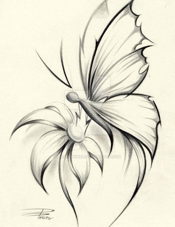 Butterfly on Flower Drawing | Butterfly sketch, Butterfly ...