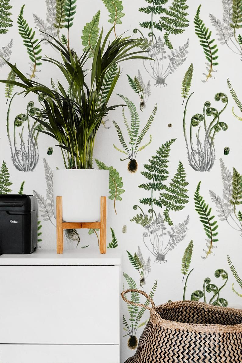 Ferns On White Removable Wallpaper 504 Etsy In 2021 Botanical Wallpaper Removable Wallpaper Temporary Wallpaper