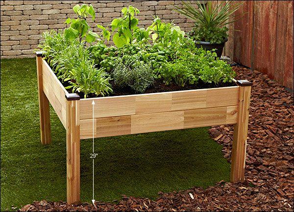 Elevated 4 X 4 Garden Vegetable Planters Garden Containers Garden