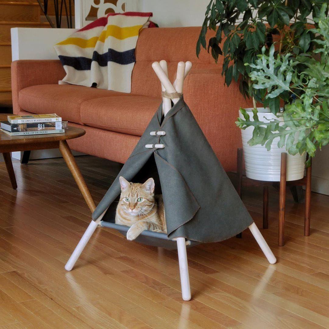 Adventure Tent Cat bed, Cat houses indoor, Tent