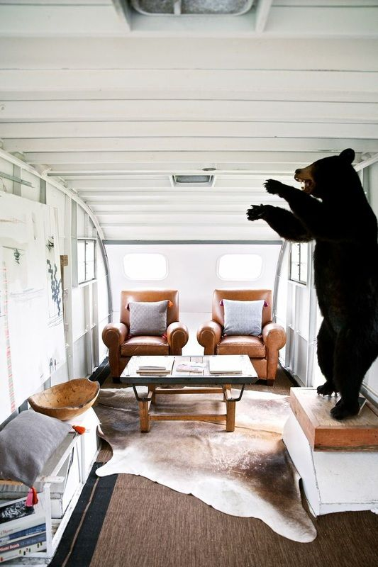 Ceiling! Walls! and Bears, oh my!