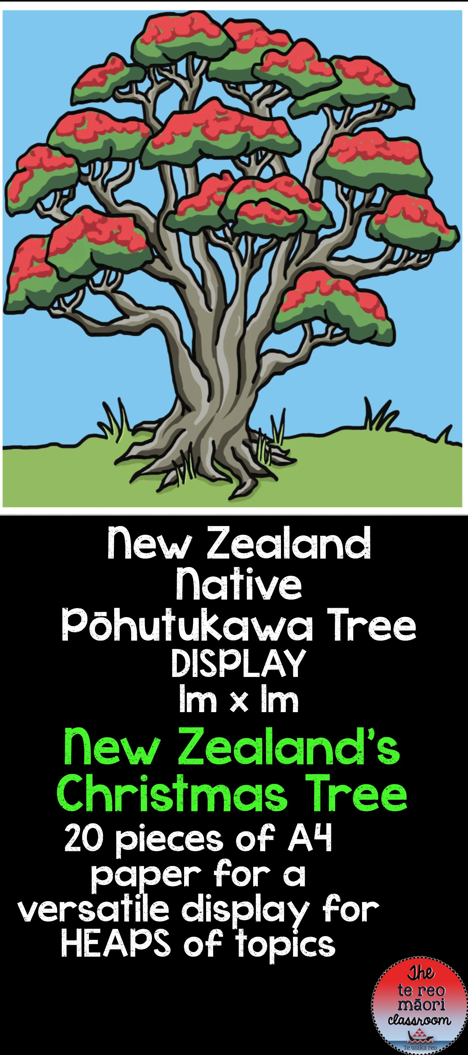 New Zealand S Christmas Tree Pōhutukawa Display Kiwi Education