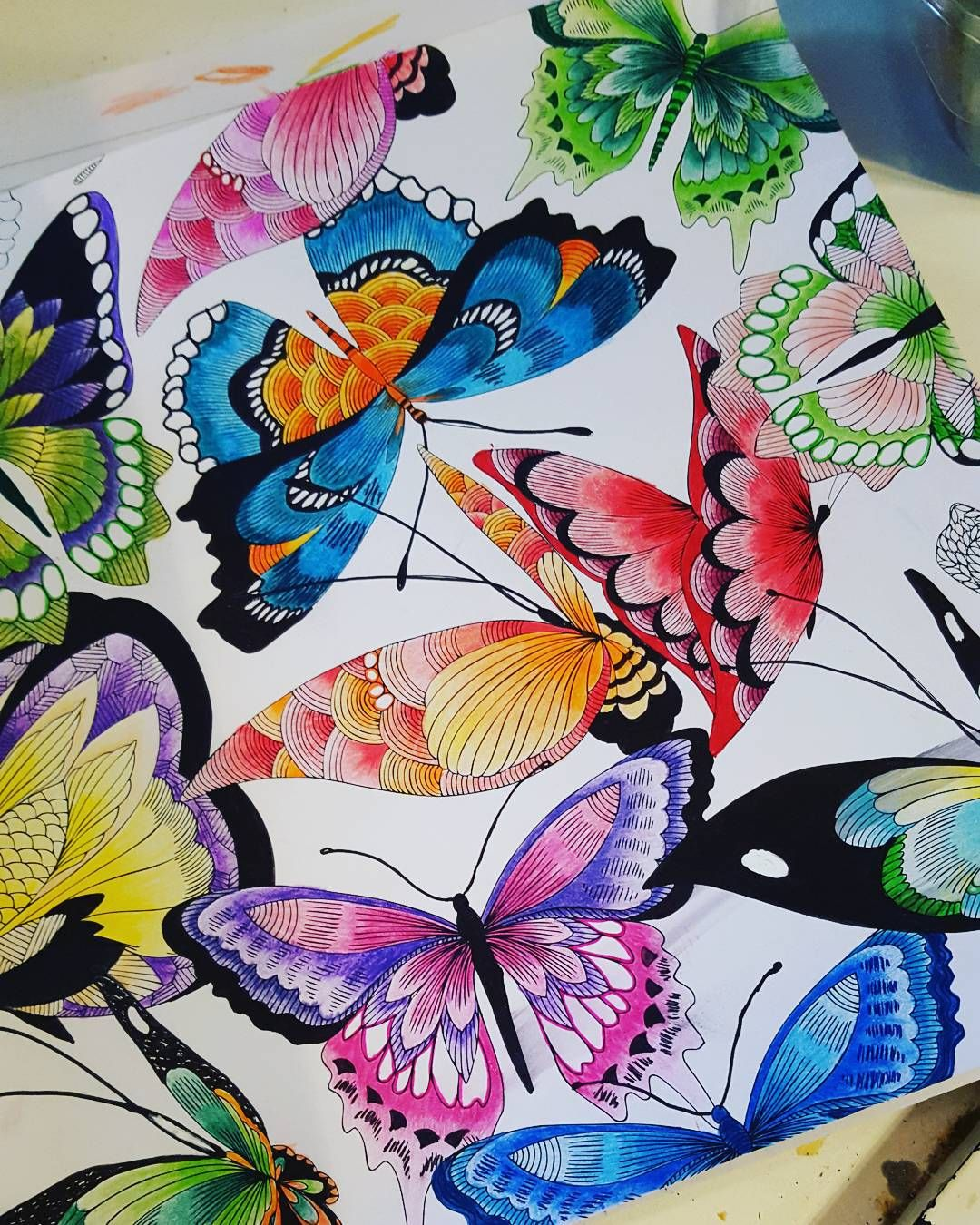 Finished My Butterflies Tropicalworld Adultcoloringbook Colouring