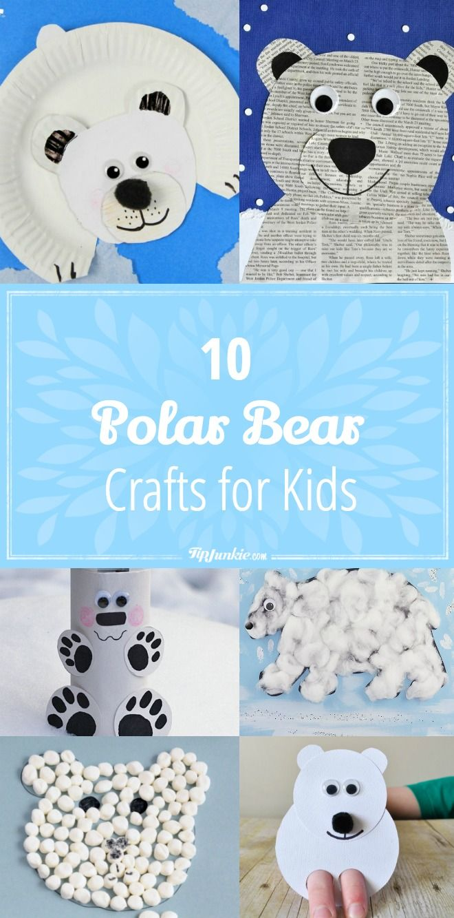 Photo of 10 Polar Bear Crafts for Kids