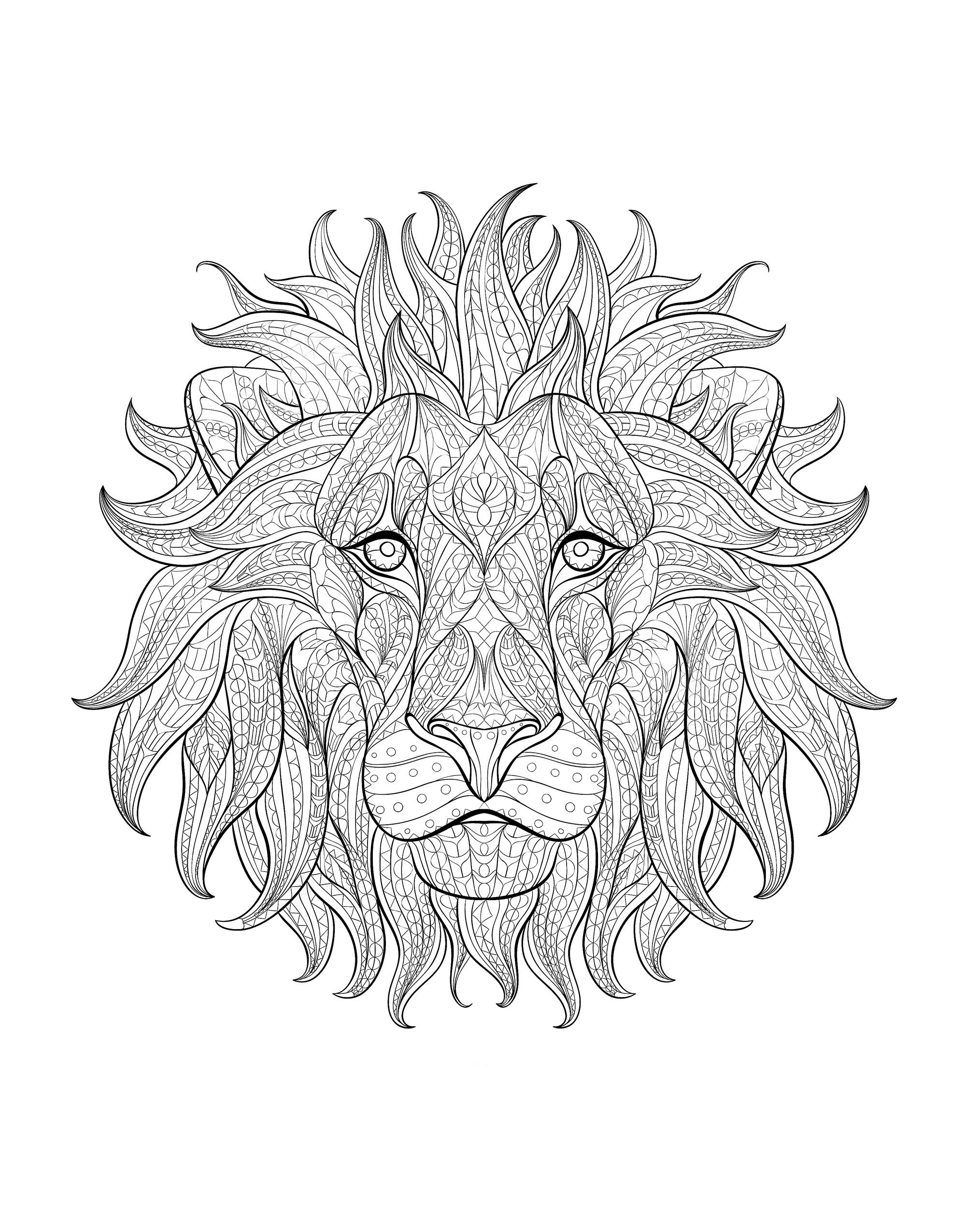 Magnificent Lion Head From Front Magnificent Lion Head From Front Lion Coloring Pages Animal Coloring Pages Mandala Coloring Pages