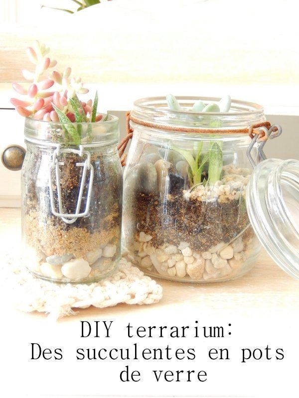 diy terrarium pour succulentes en bocal en verre 2 inspiration d co terrarium terrarium. Black Bedroom Furniture Sets. Home Design Ideas