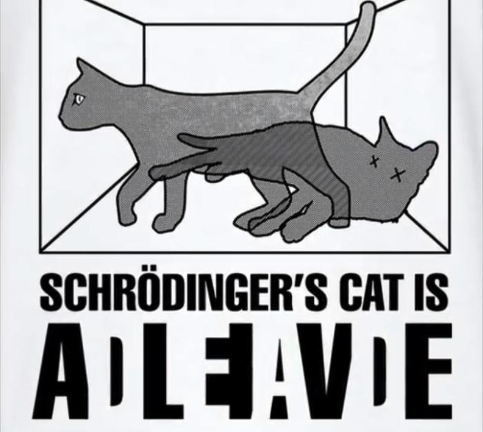 Schrödinger's Cat: Dead or Alive? Or both? Or Neither ...