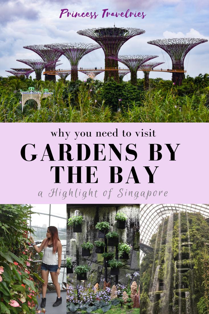 b921d16e5e34ea676317f07ec6cc5a2b - How To Visit Gardens By The Bay