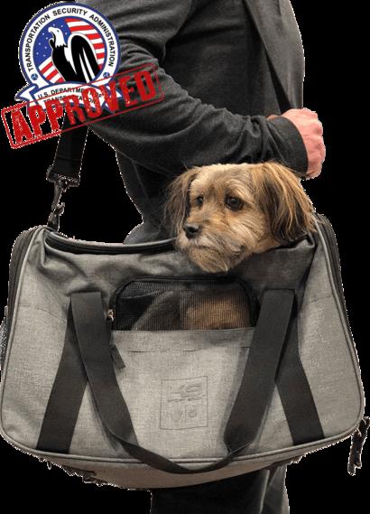 Air plus Dog training, a dog trainer, Dog carrier