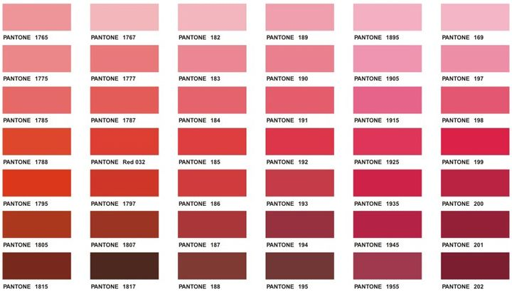 One Of The Shades Could Be Your Perfect Blush. Imagine Them As A