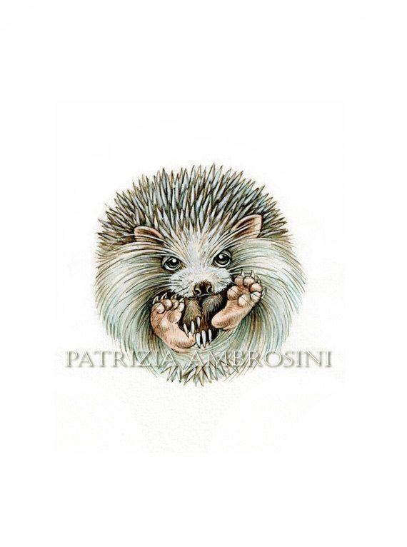 PRINT .  Hedgehog ball ..... PRINT by happyapplebumblebee on Etsy, $6.00