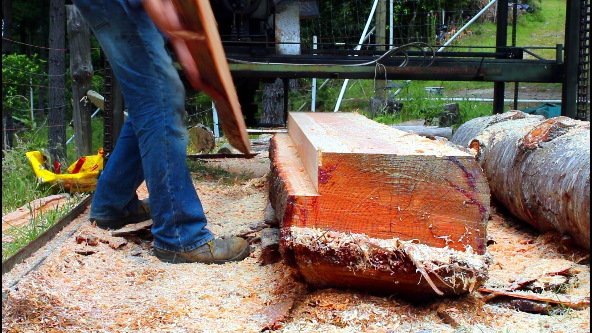 home made twin blade sawmill in action woodworking prelucrarea