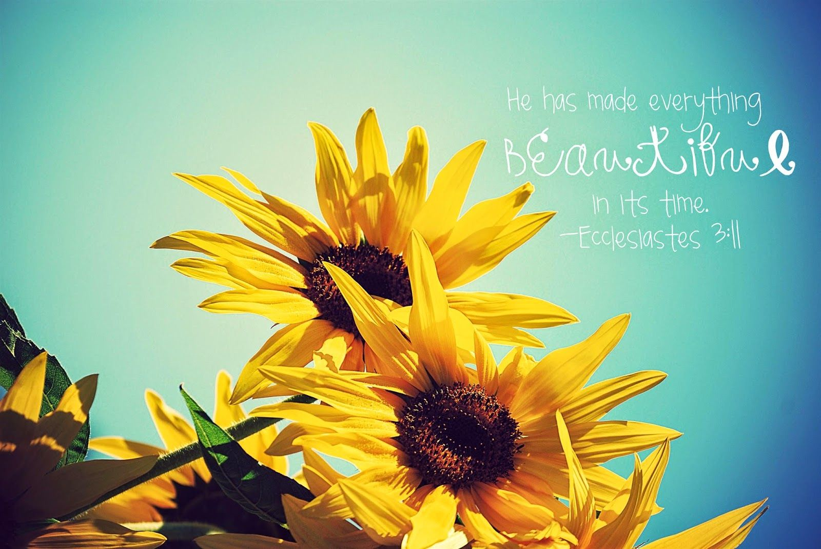 Free Christian Desktop Wallpapers Mysunwillshine Com Sunflower Wallpaper Tumblr Backgrounds Facebook Cover