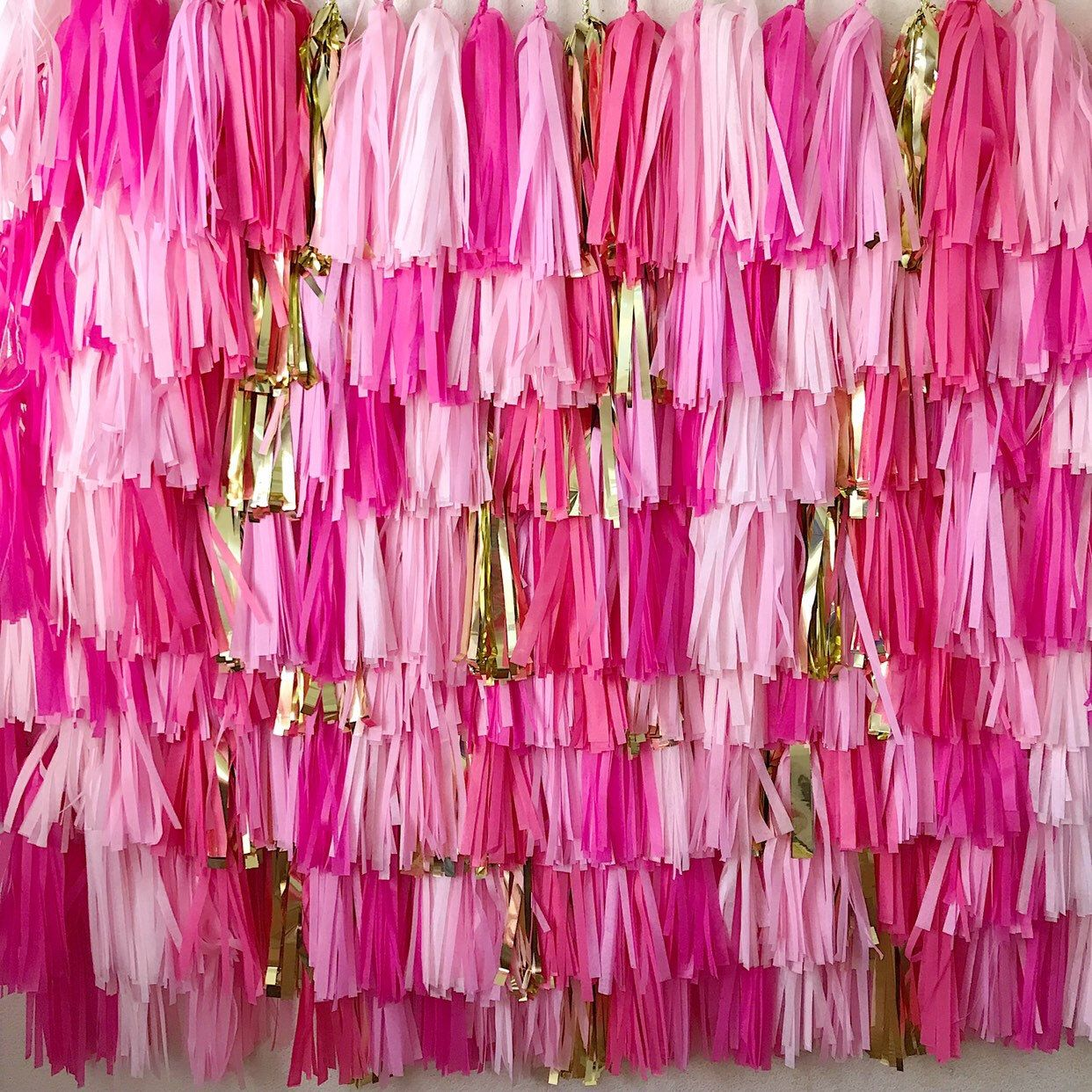 8 Piece tissue paper tassel Fringe Backdrop Wall, tassel banner Backdrop, Fringe garland Backdrop, Birthday, Party Theme, tassle
