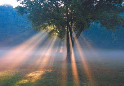 El Rincon de mi Espiritu: ¿Desgracia o bendición?