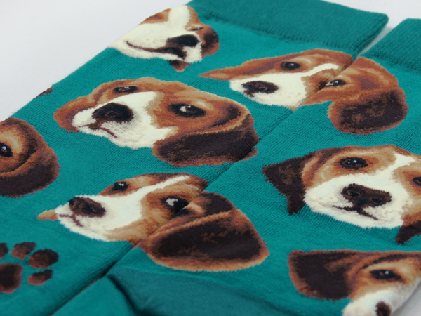 Dogs - Beagle Pup Face   JHJ Design - The Art of Wearing Socks