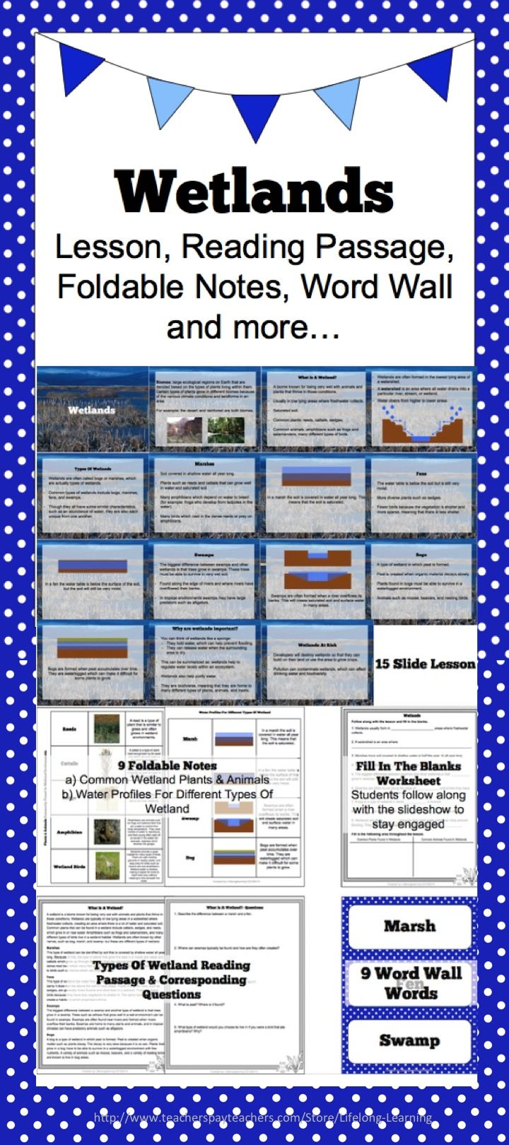 Wetlands: Lesson, Reading Passage, Foldable Notes, Word Wall & more ...