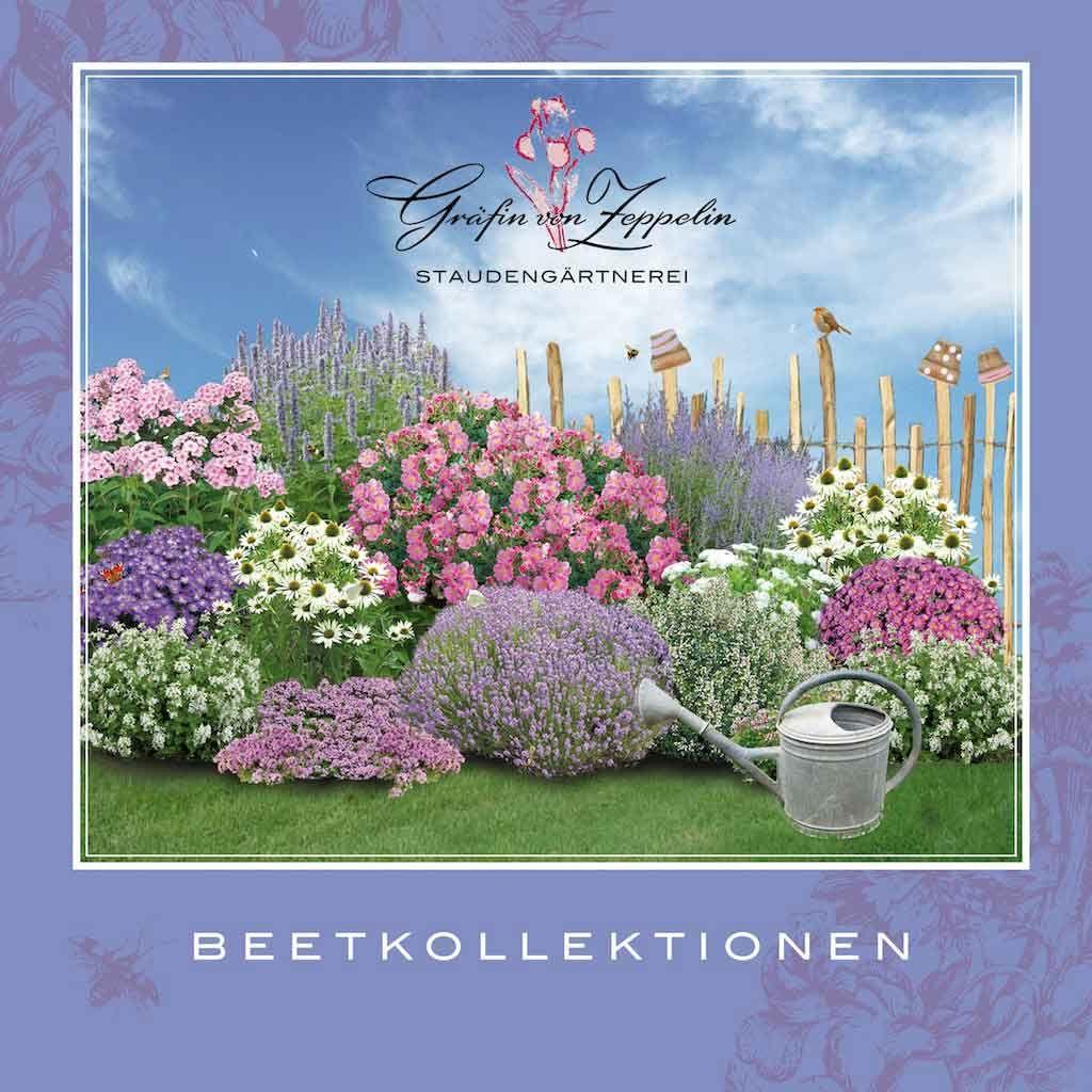 Beetkollektionskatalog 61 Beetideen für jeden Gartenbereich #blumenbeetanlegen