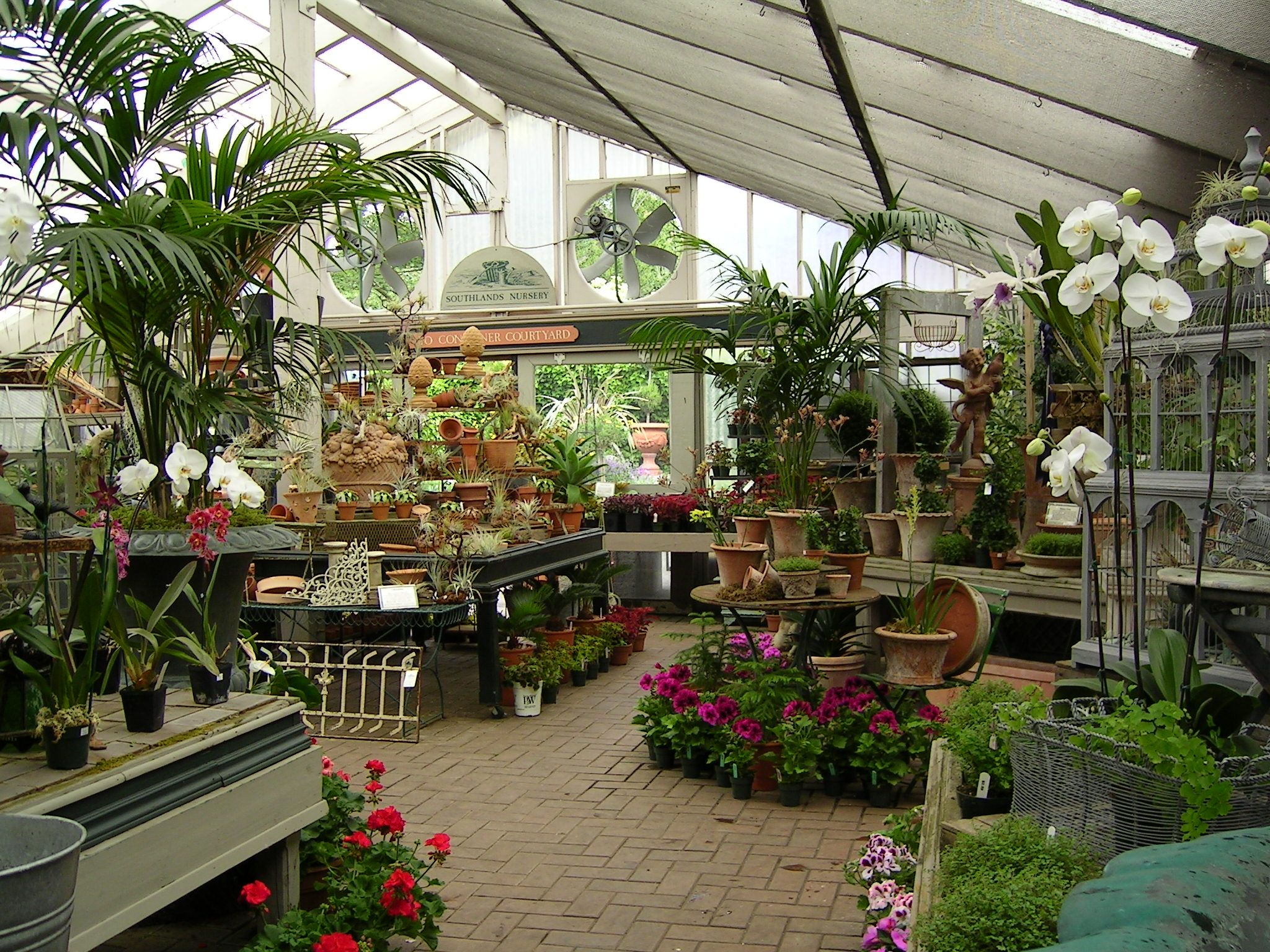 Southlands Nursery, Vancouver | Pinterest | Garden shop, Green ...