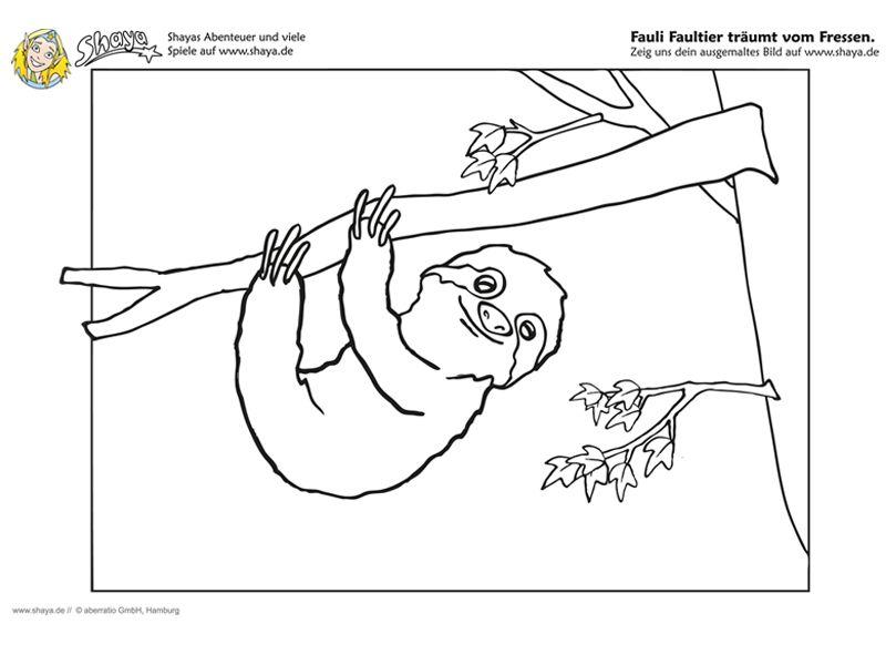 Ausmalbild : Fauli das Faultier träumt vom Fressen! #coloring #kids ...