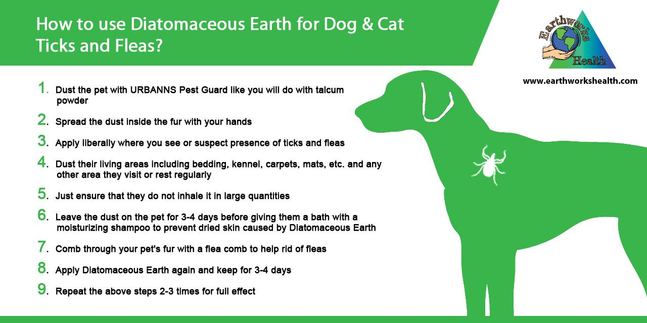 How To Get Rid Of Fleas Read More At Http Www Earthworkshealth Com Get Rid Of Fleas Php Diatomaceousearth Fleas Dog Diatomaceous Earth Cat Steps Dog Cat