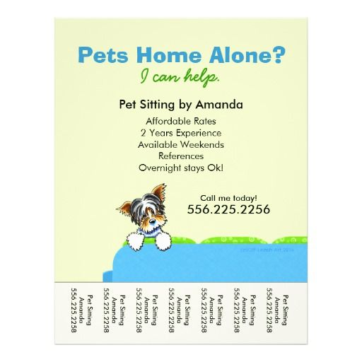 Pet Sitter Ad Yorkie Couch Green Tear Sheet 25 Flyers. Pet Sitter Ad Yorkie Couch Green Tear Sheet 25 flyers. White Things white color yorkie