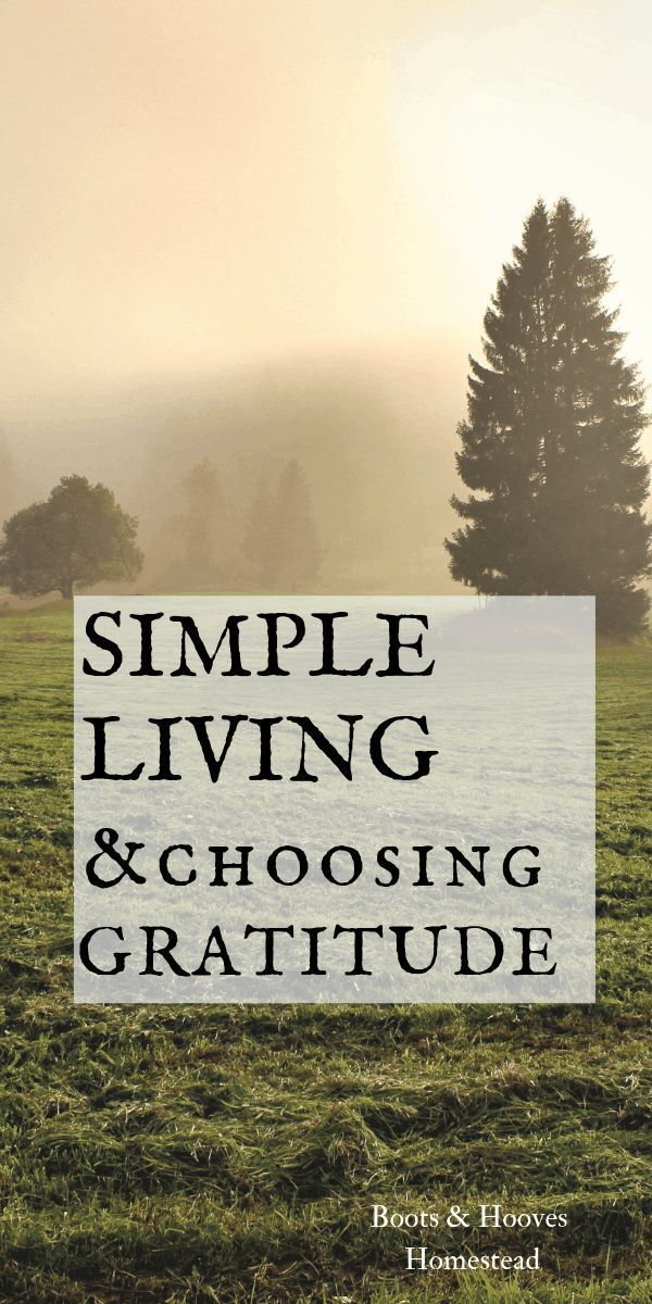 Choosing Gratitude Leads to a Simple Life