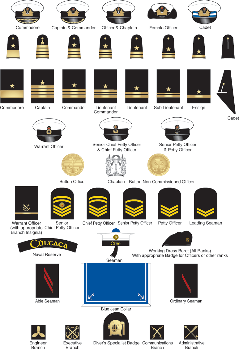 The Military Insignia Includes A Variety Of Different Symbols And