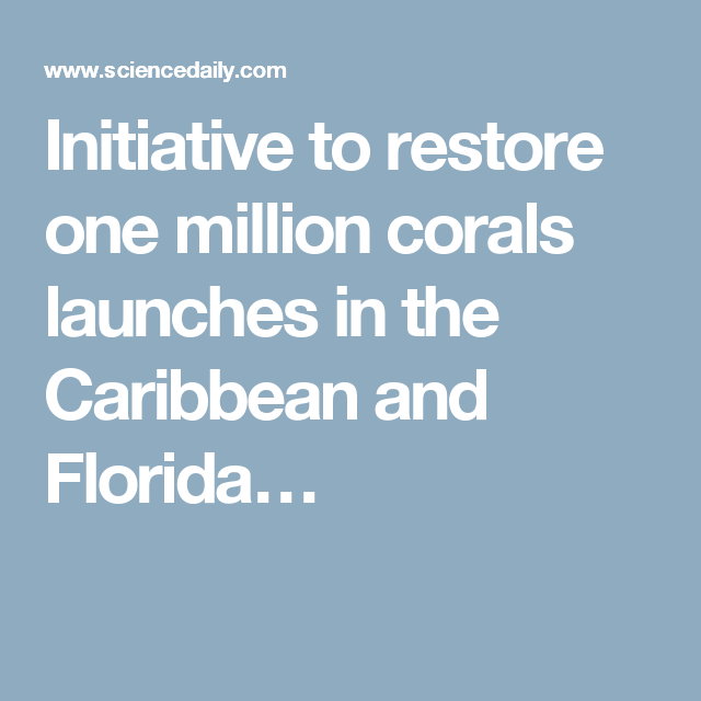 Initiative to restore one million corals launches in the Caribbean and Florida…