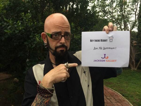 Jackson galaxy weight loss did gastric bypass surgery for Jackson galaxy images