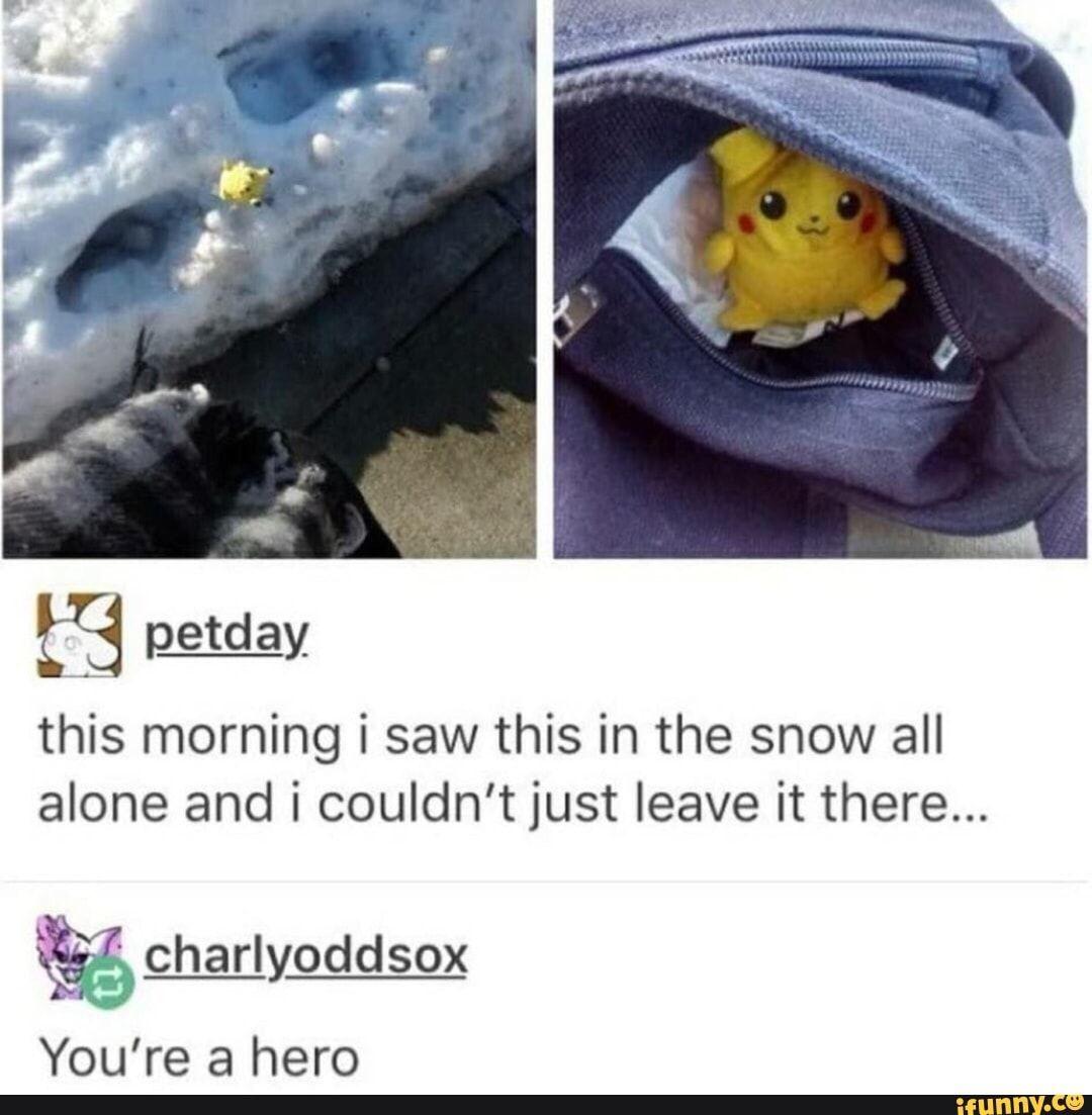 Why Sleep When You Can Meme Pokemon Memes Memes Pokemon