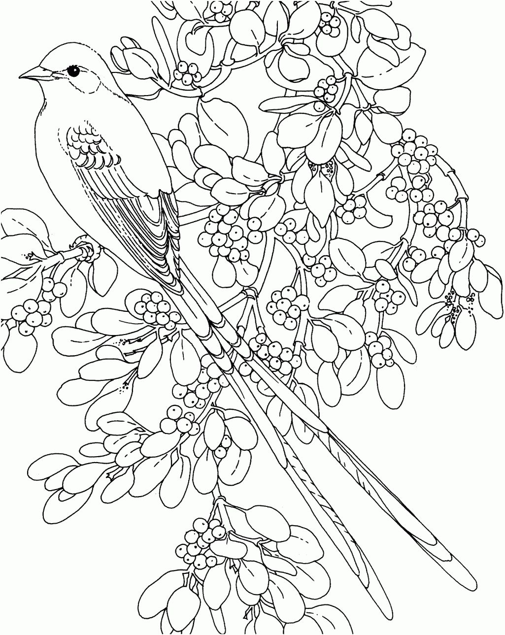 Rose Coloring Pages And Book Uniquecoloringpages